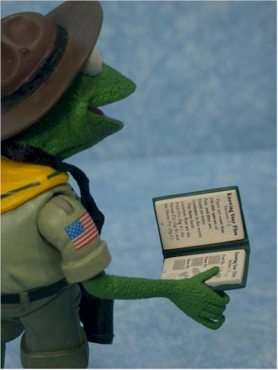 Frog Scout Leader Kermit Action Figures Another Toy