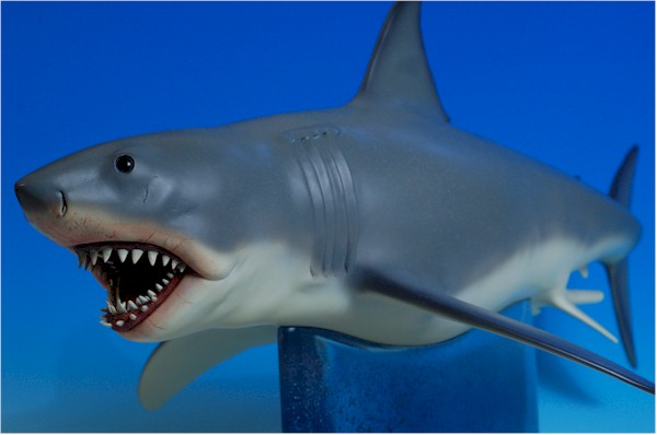 Jaws Bruce The Shark Maquette Another Toy Review By