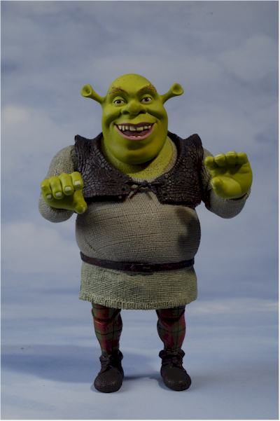 Shrek The Ogre Action Figure Another Pop Culture