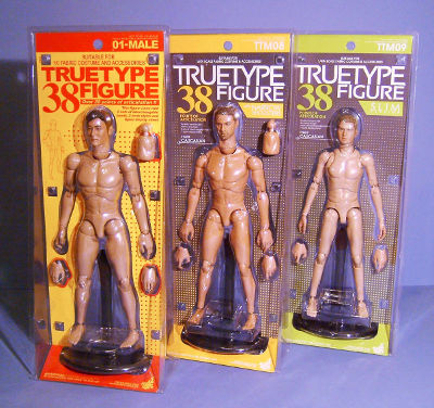 Hot Toys TrueType body (narrow, slim, regular) comparison review