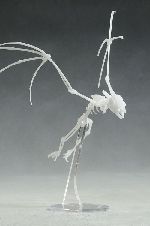 Review And Photos Of Bonelab Skeleton Vampire Bat Figure
