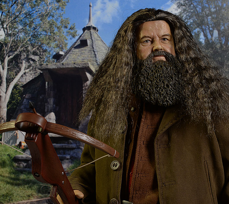 hagrid harry potter wwwpixsharkcom images galleries