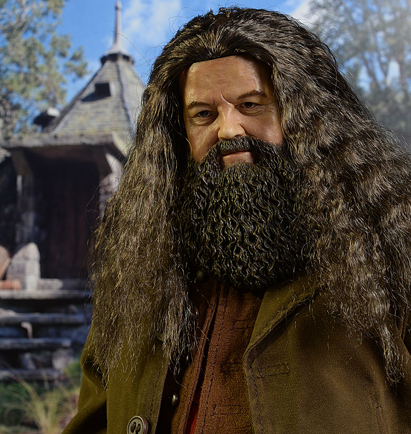 review and photos of star ace harry potter hagrid sixth