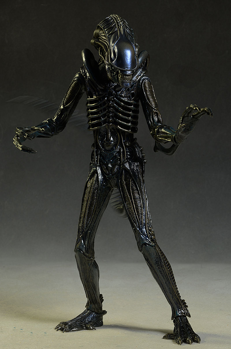 Aliens Alien Warrior sixth scale figure by Hot Toys